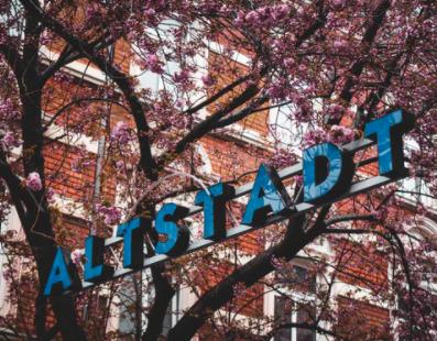 Discovering Stealth Companies: Neuway Pharma from Bonn, Germany